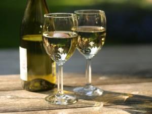 WineEtiquette